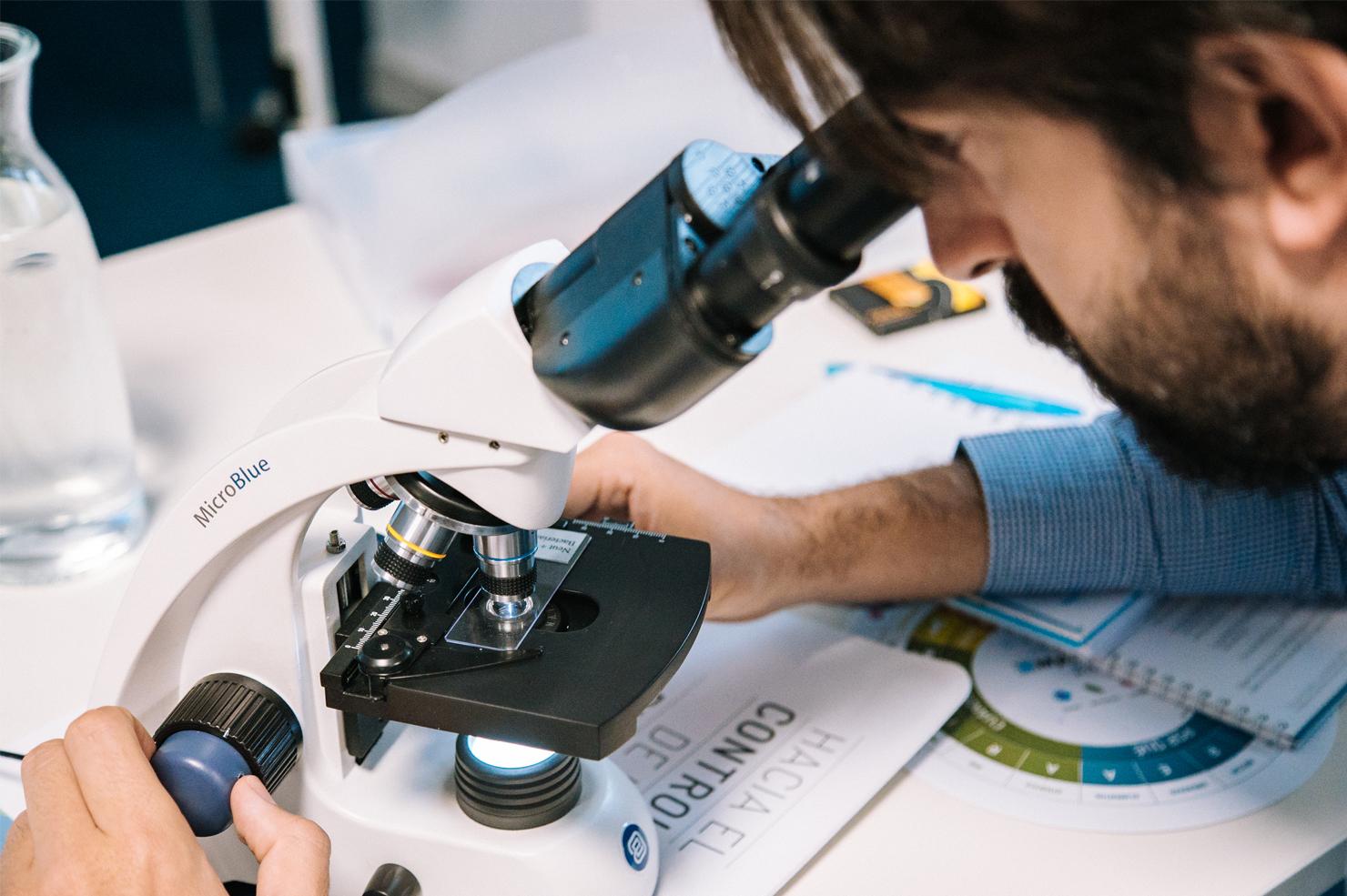 Microscopio01